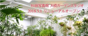 杉田写真館の画像4